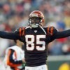 NFL news: Chad Ochocinco to try bull riding