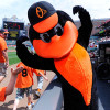Gambling Baltimore Orioles