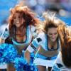 Panthers betting