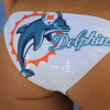 Bet on the Miami Dolphins AFC East