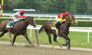 2021 Diana Stakes Free Pick & Handicapping Odds & Prediction